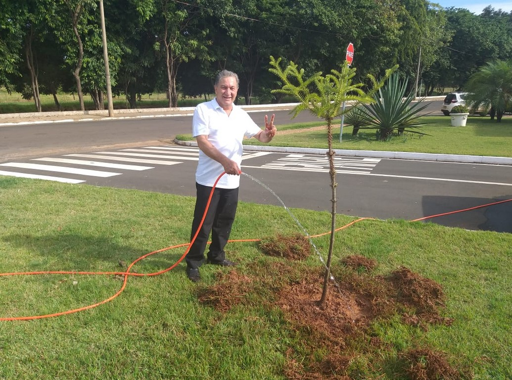 Vereador Osmar planta Araucária em comemoração ao Dia do Meio Ambiente