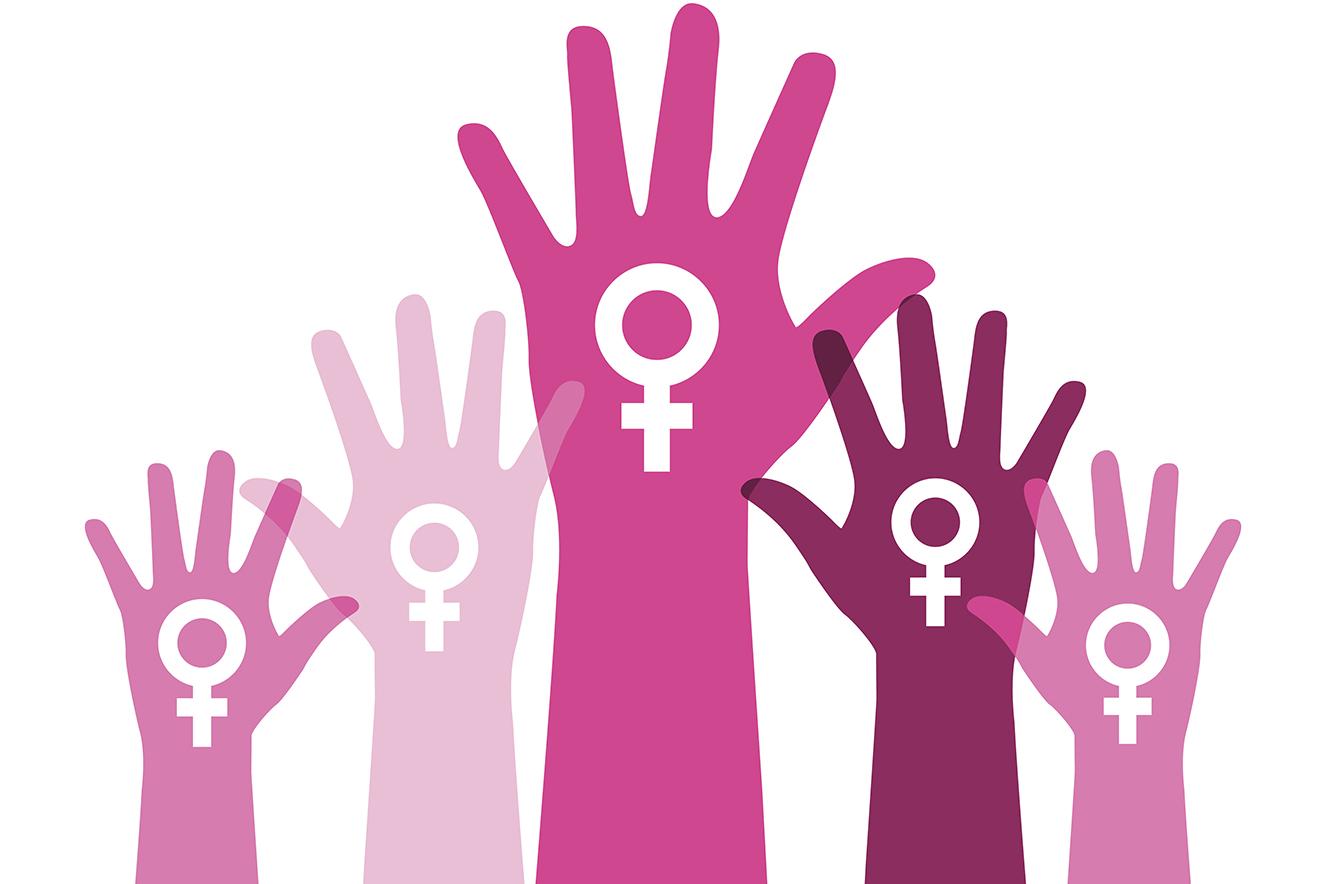 Câmara de José Bonifácio cria Comissão para discutir os Direitos das Mulheres